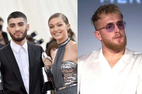 Internet Gone Wild as Gigi Hadid Defends Zayn Malik over Jake Paul Diss Tweet