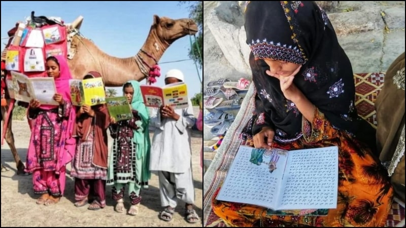 Camel Mobile Library is Distributing Free Books in Turbat to Boost Literacy