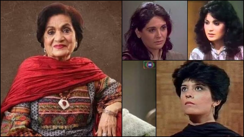 Alvida Haseena Moeen: You'll be Forever Alive Through 5 Most Loved Women Characters