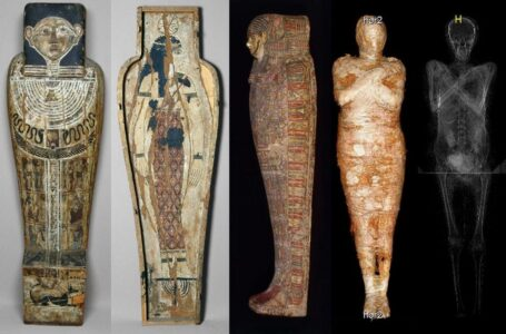 Polish Scientists Discover World's First 'Pregnant' Egyptian Mummy