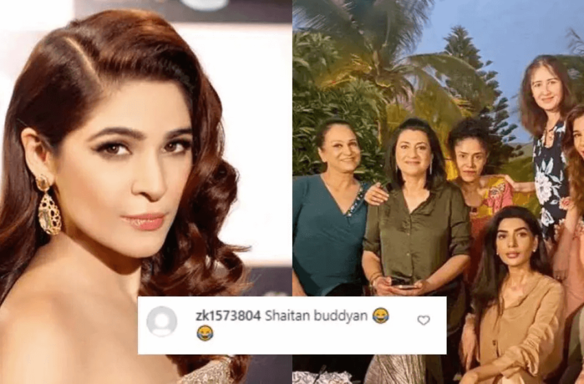 'Shaitan Buddhiyan' is an Extremely Rude Comment that Triggered Social Media